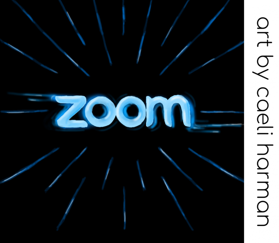 Stop Zooming Through Zooms